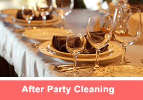 AfterPartyCleaning