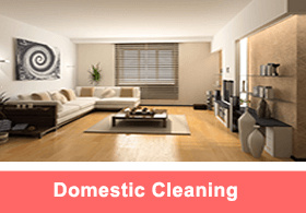 DomesticCleaning